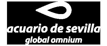 acuario_sevilla_web