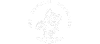 escorpa logo blanco